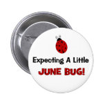 Expecting A Little June Bug Maternity Pinback Buttons