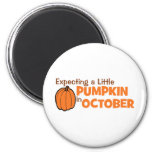 Expecting A Little Pumpkin In October 2 Inch Round Magnet