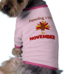 Expecting A Little Turkey in November! Dog Clothes