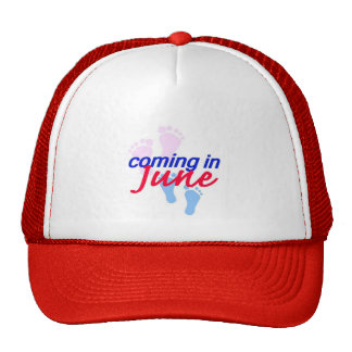 Expecting JUNE Hat