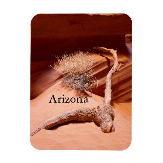 Explore Arizona Rectangular Photo Magnet