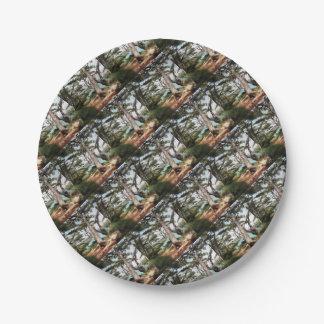 Explore Dream Discover Paper Plate