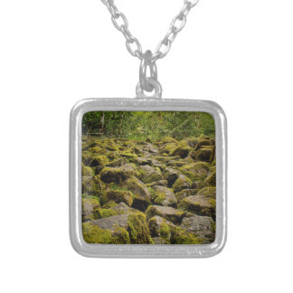 explore oregon silver plated necklace