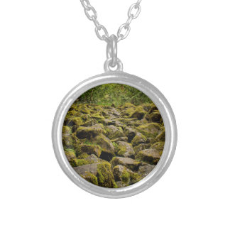 explore oregon silver plated necklace