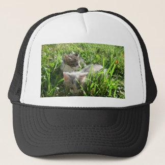Exploring Kittens Trucker Hat