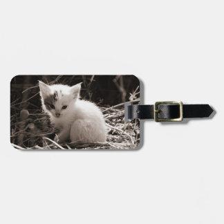Exploring Kitty Luggage Tag