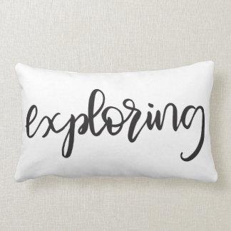 Exploring | Pillow