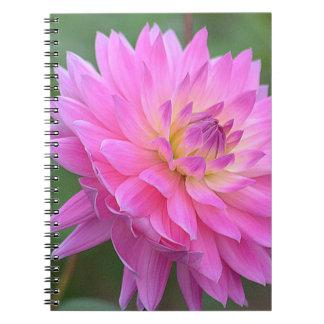 Expressive Spiral Notebook