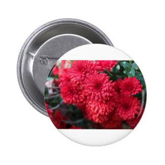Exquisite Echo 2 Inch Round Button