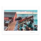 Exterior View of Del Monte Sardine Packing Postcard