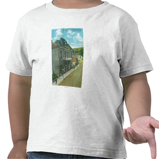 Exterior View of the Famous Opera House T-shirt