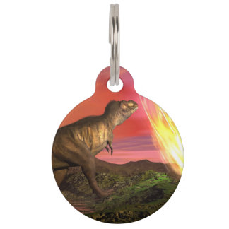 Extinction of dinosaurs - 3D render Pet Nametags