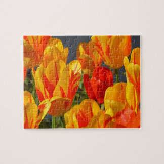 Extremely Difficult Garden Flower Tulips Jigsaw Puzzle