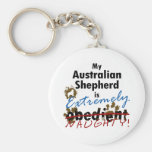 Extremely Naughty Australian Shepherd