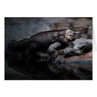 Exuma Island iguana Card