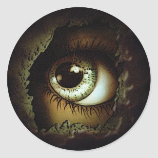 Eye Can See You Classic Round Sticker