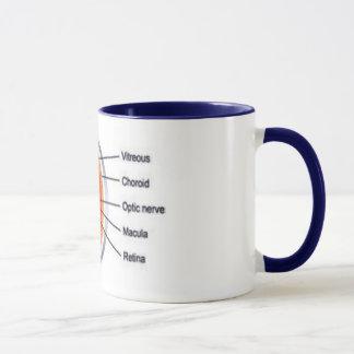 eye cup II