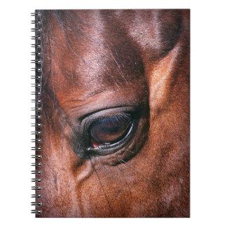 eye of horse note books