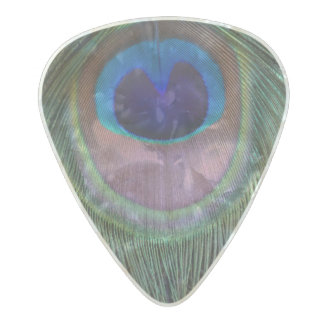 Eye of Peacock Feather Photograph Guitar Pick Pearl Celluloid Guitar Pick