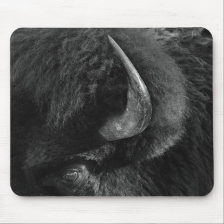 Eye Of The Bison Mouse Pad