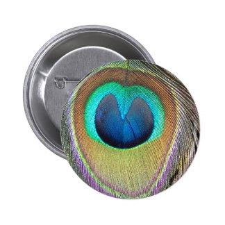 eye of the peacock button