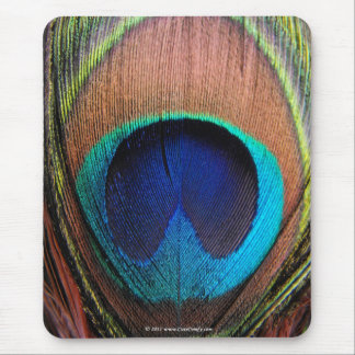 Eye of the Peacock Feather Close-Up Mouse Pad