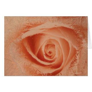 Eye of the Rose Card