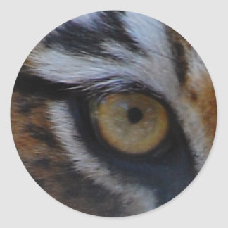 Eye of the tiger classic round sticker