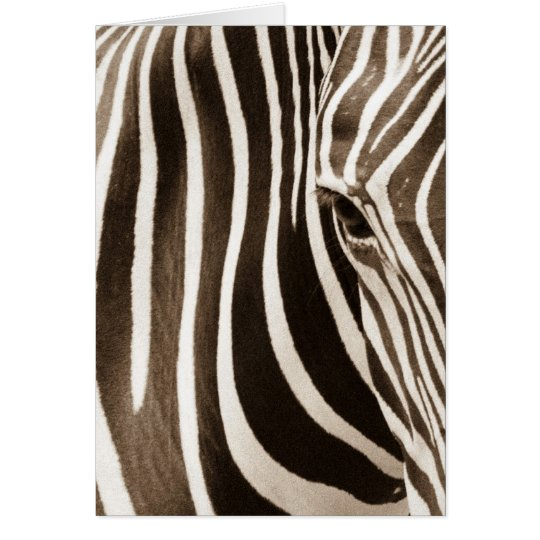 Eye of the Zebra Card