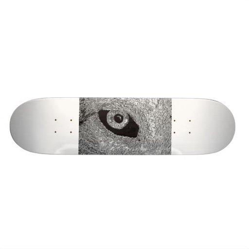 eye of wolf skate boards