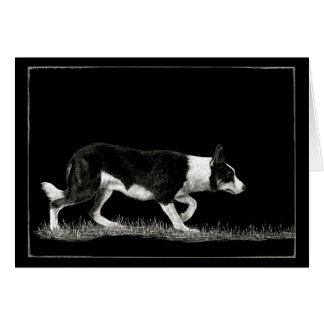 """Eye See Ewe"" - Border Collie Card"
