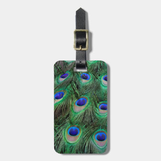 Eye-spots on Male Peacock feather Luggage Tag
