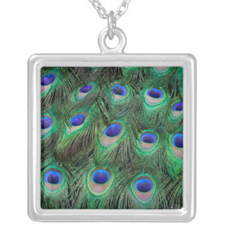 Eye-spots on Male Peacock feather Silver Plated Necklace