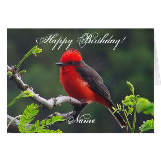 Eye to Eye Birthday Greeting Card