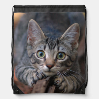 Eye to Eye With a Silver Tabby Kitten Drawstring Bag