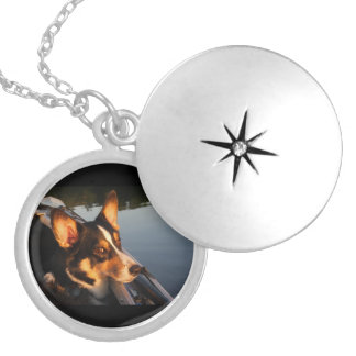 Eyes of a Star Silver Plated Necklace