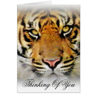 Eyes of the Tiger,Love_ Card