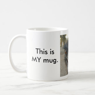 """Eyes off""  Emu mug"