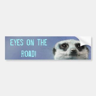 Eyes on the Road Meerkat Bumper Sticker