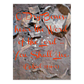 Ezekiel Bible O dry bones Postcard