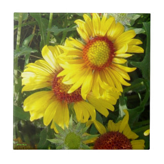 F0006 Yellow Wildflowers Tile