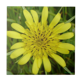 F0009 Yellow Wildflower Ceramic Tile