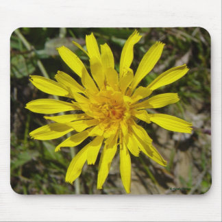 F0021 Yellow Wildflower mouse pad