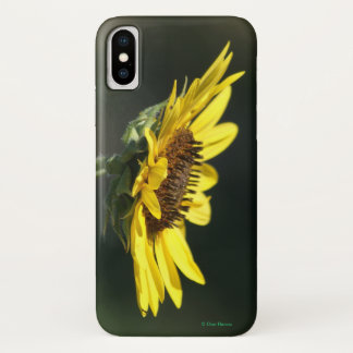 F0043 Yellow Wildflower Iphone 8/7 phone case