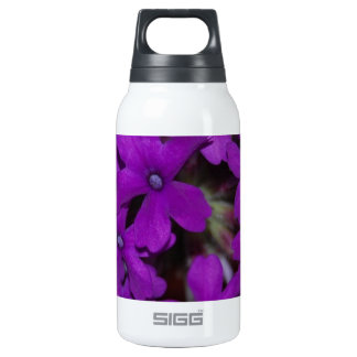 F0071.JPG INSULATED WATER BOTTLE