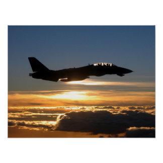 F-14D Tomcat Posters