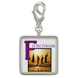F for Friends Charms