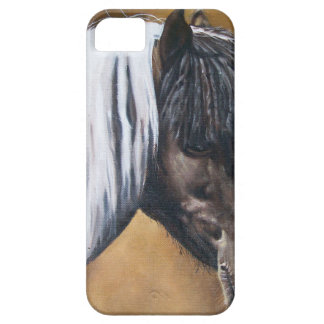 FAA-AfroPony iPhone 5 Covers