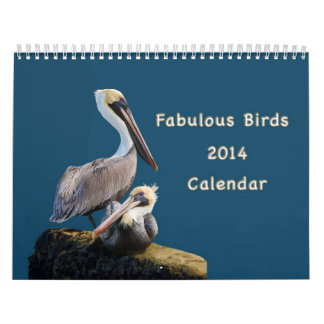 Fabulous Birds 12 Month Calendar