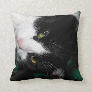 Fabulous Cats! Throw Pillow